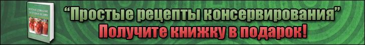 Целозия гребенчатая: описание, размножение, выращевание и применение